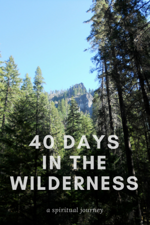 40 Daysin thewilderness